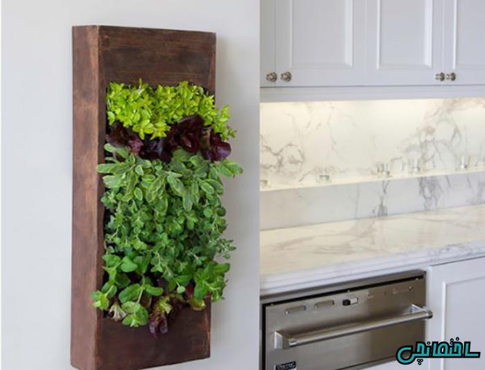 استفاده از دیوار سبز در خانه