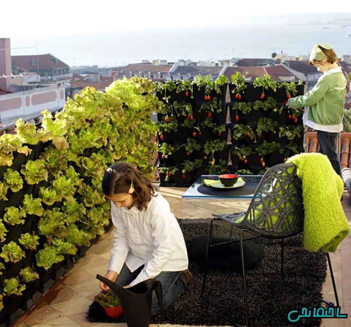 %عکس - دکوراسیون منزل با استفاده از گل و گیاه